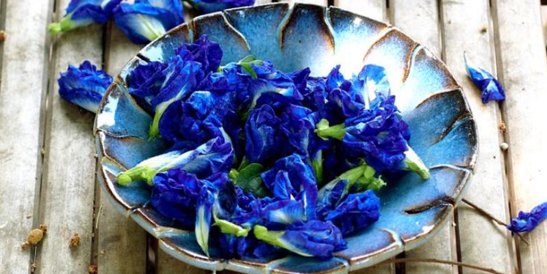 Синий чай из Тайланда, синий чай тайланд