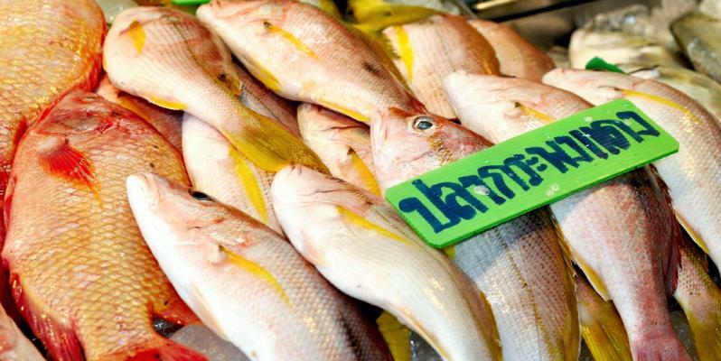 Рыба, рыбный рынок в Паттайе, Naklua Fish Market, морепродукты Паттайя, тайские морепродукты