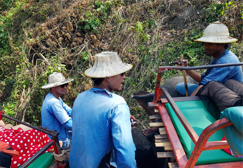 Погонщики слонов на прогулке, слон в Таиланде, тайский слон